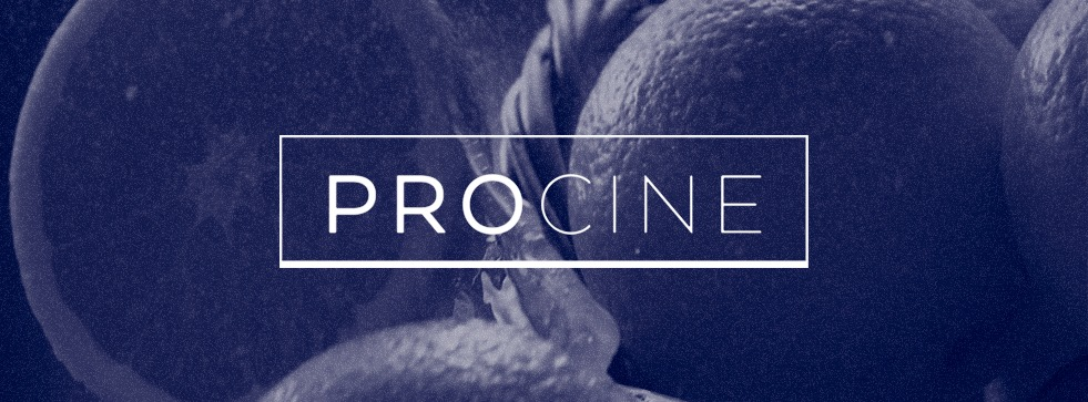 procine_fondo2
